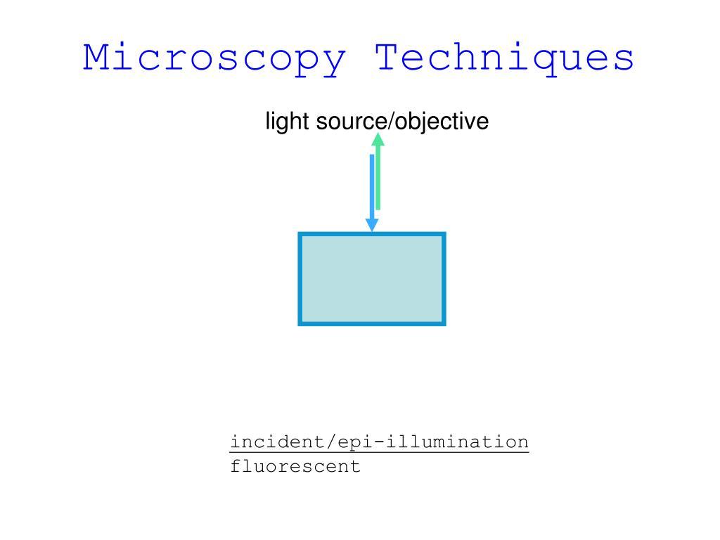 Microscopy Techniques