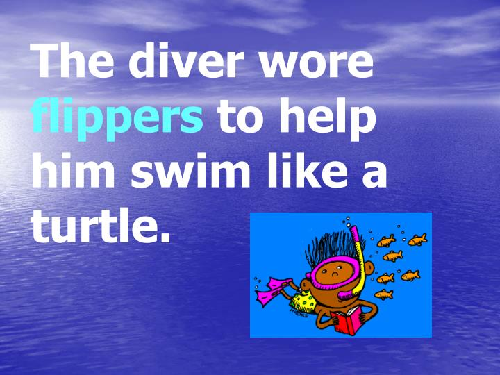 The diver wore