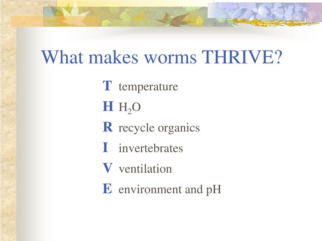 What makes worms THRIVE?