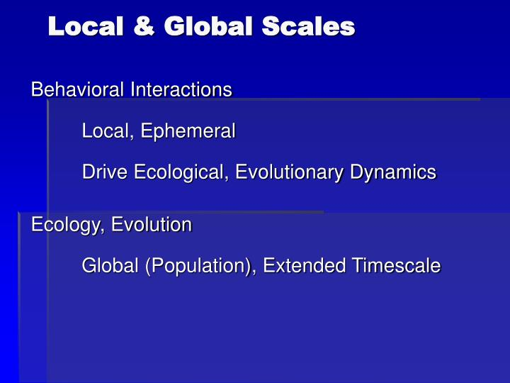 Local & Global Scales