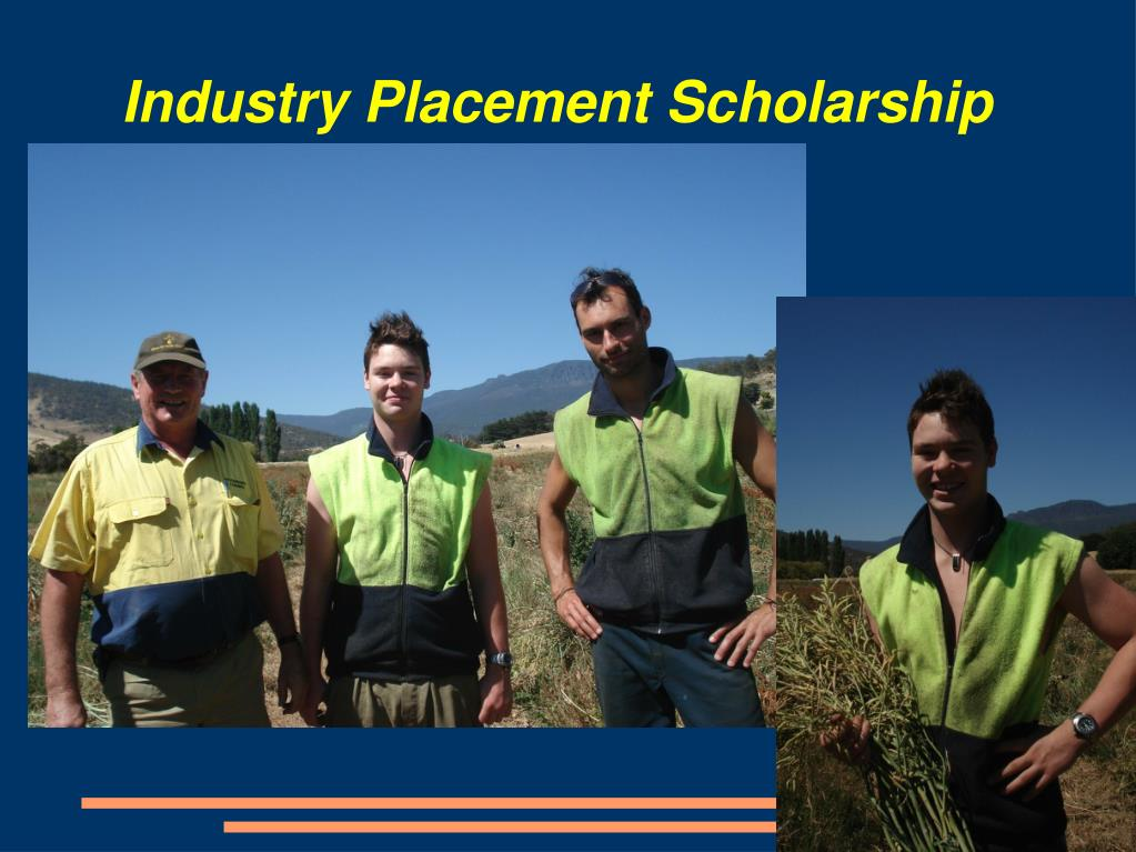 Industry Placement Scholarship