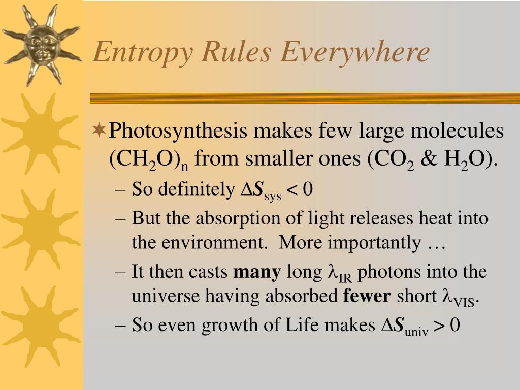 Entropy Rules Everywhere