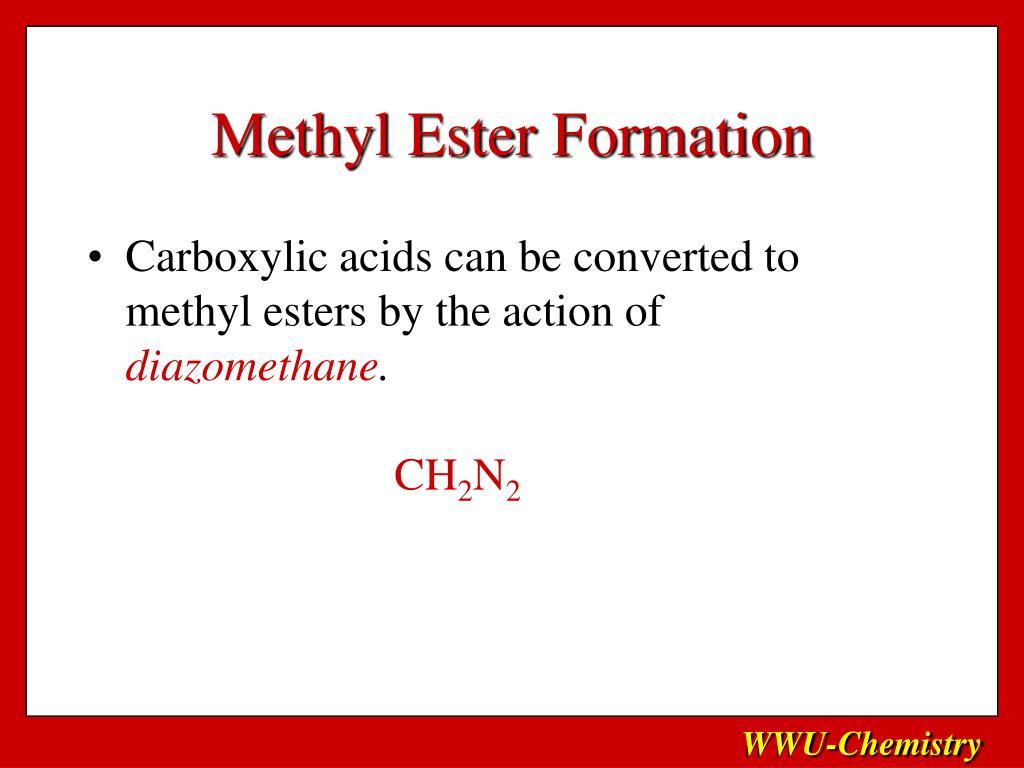 Methyl Ester Formation