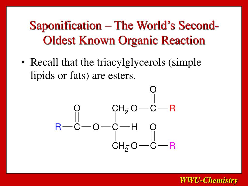 Saponification – The World's Second-Oldest Known Organic Reaction