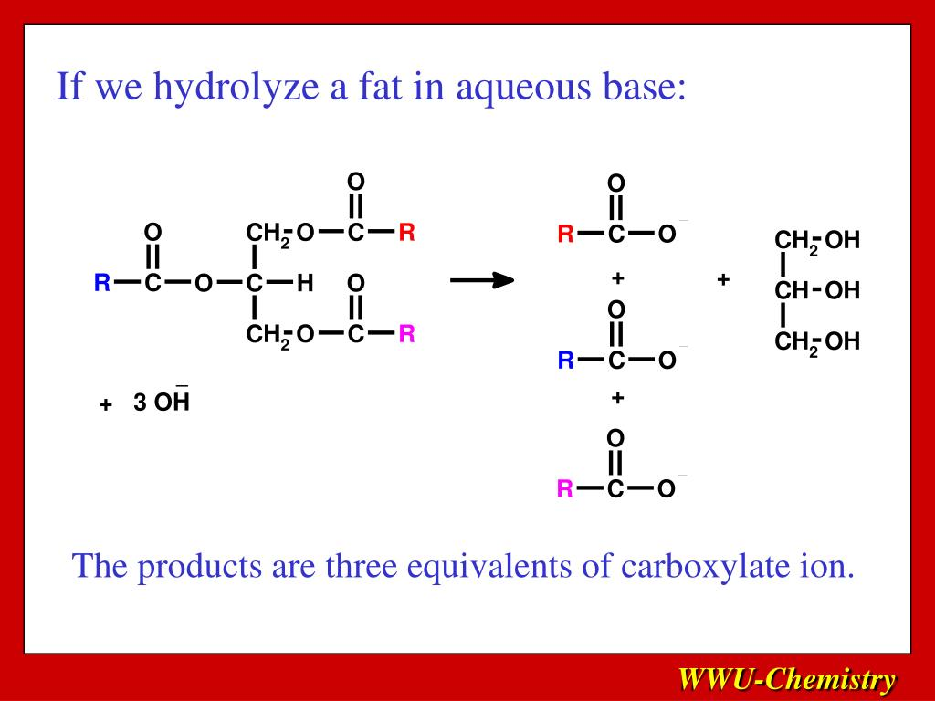 If we hydrolyze a fat in aqueous base: