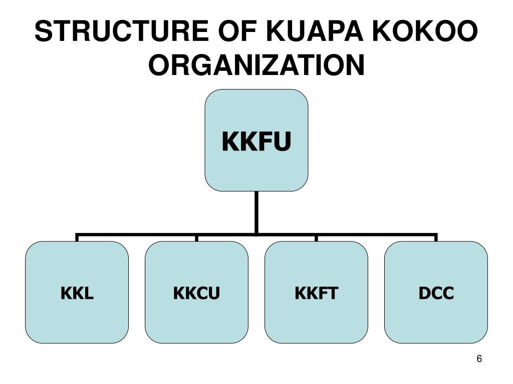 STRUCTURE OF KUAPA KOKOO ORGANIZATION