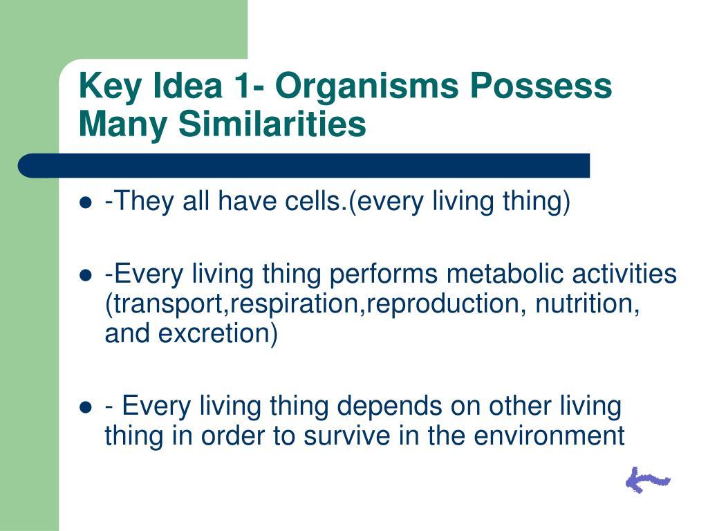 Key Idea 1- Organisms Possess Many Similarities