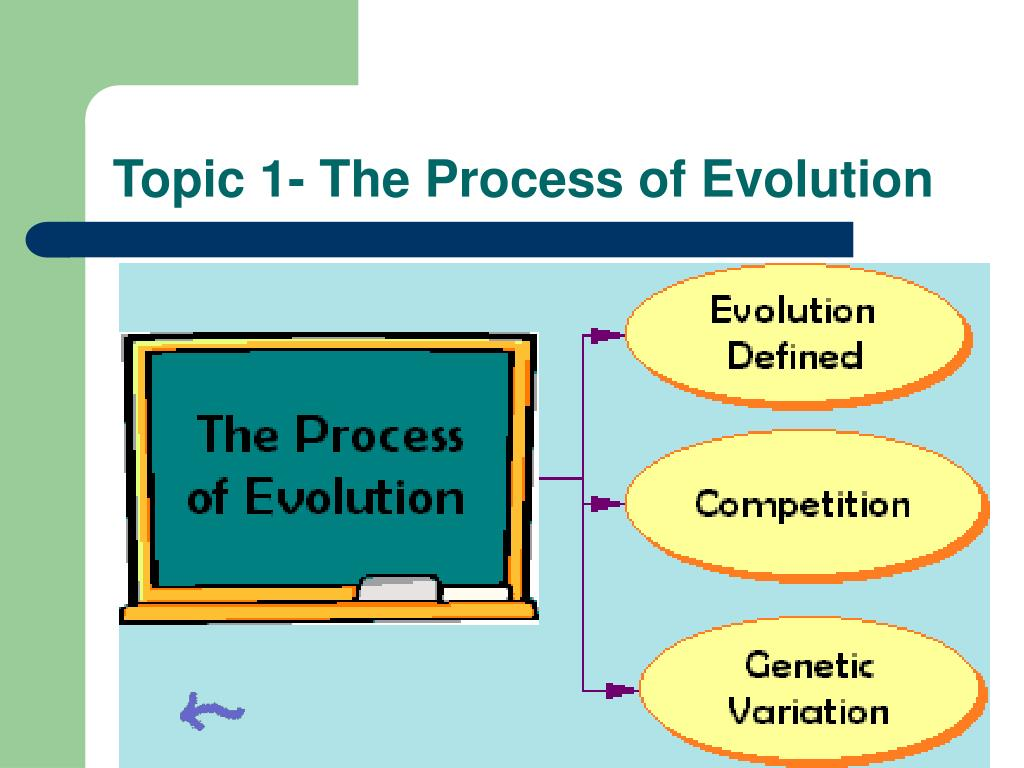 Topic 1- The Process of Evolution