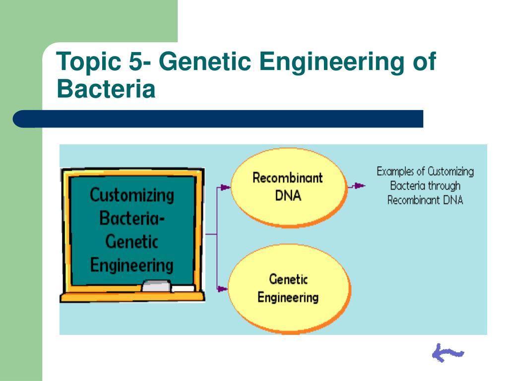Topic 5- Genetic Engineering of Bacteria