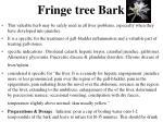 fringe tree bark