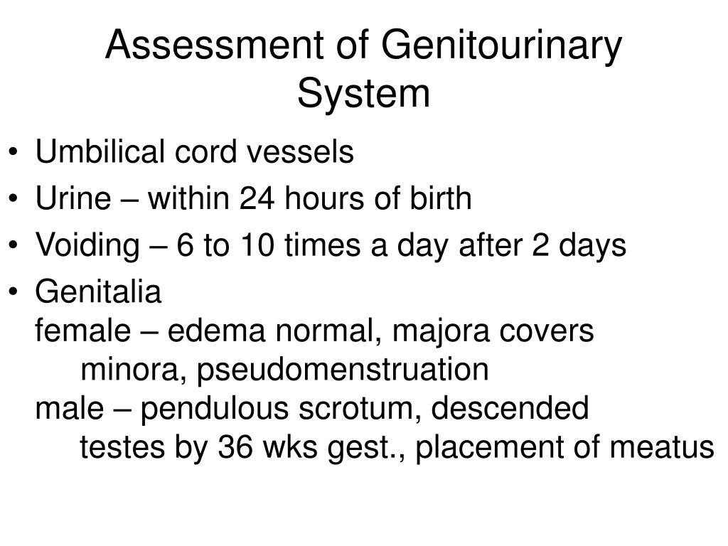 Assessment of Genitourinary System