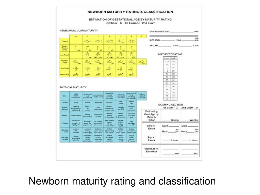 Newborn maturity rating and classification