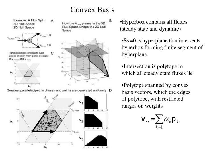 Convex Basis