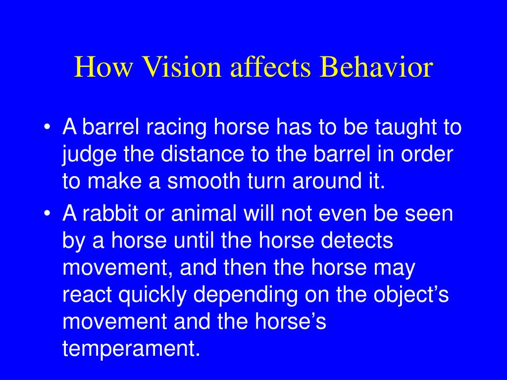 How Vision affects Behavior