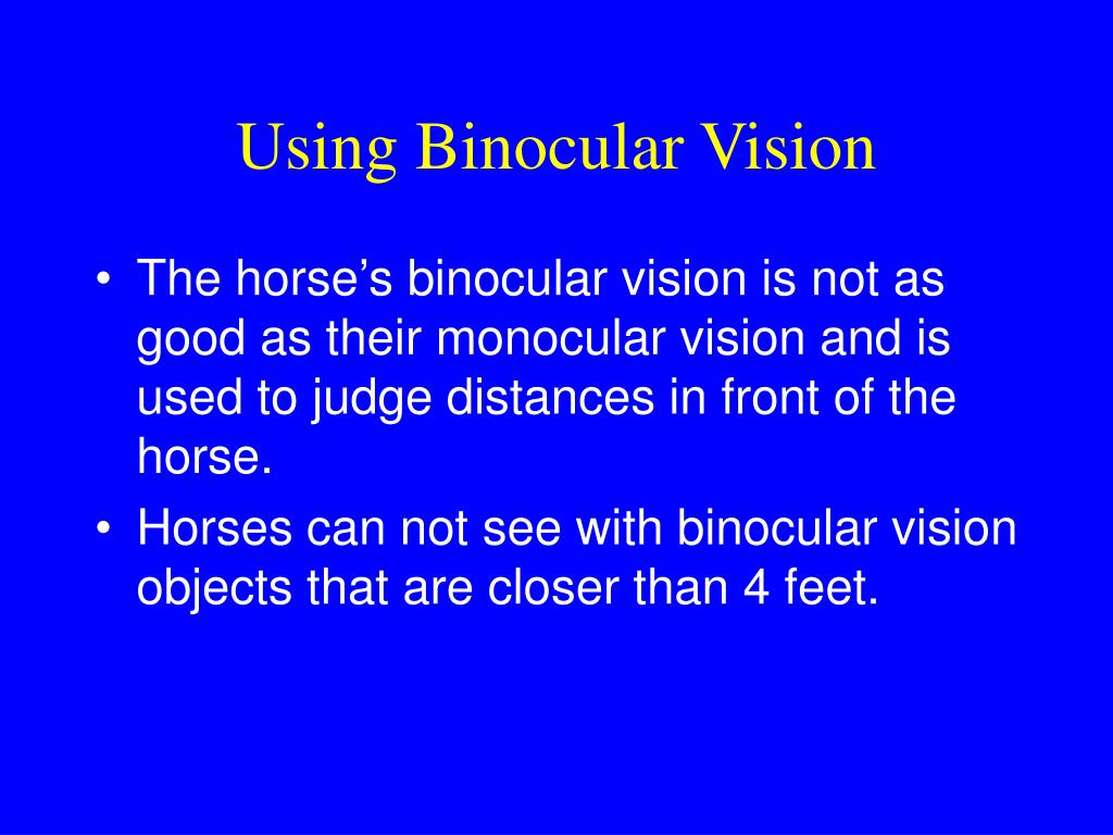 Using Binocular Vision
