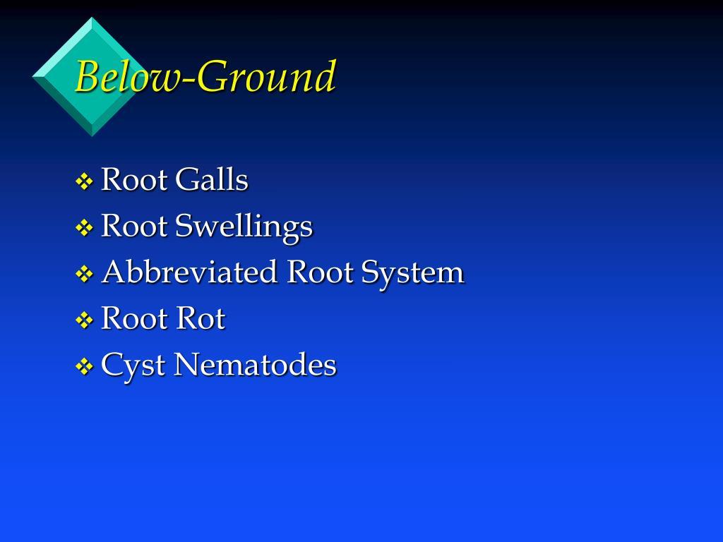 Below-Ground