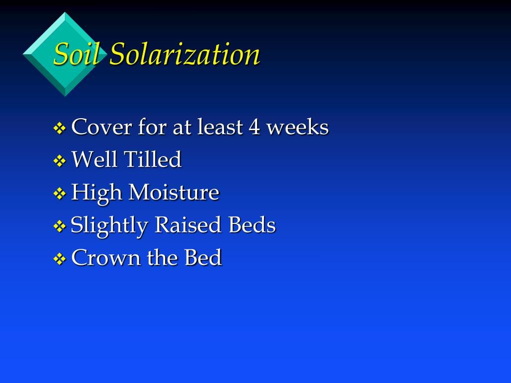 Soil Solarization