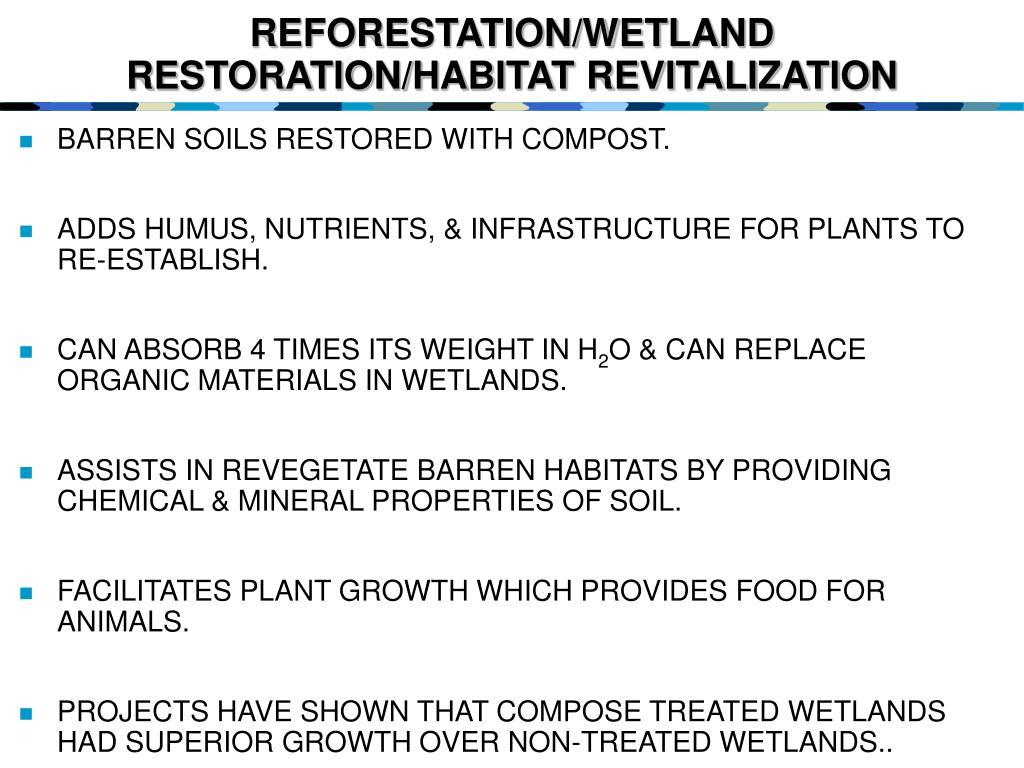 REFORESTATION/WETLAND