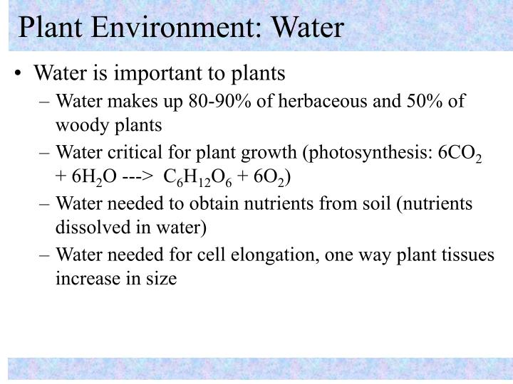 Plant environment water
