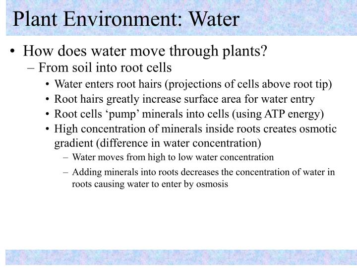 Plant environment water2