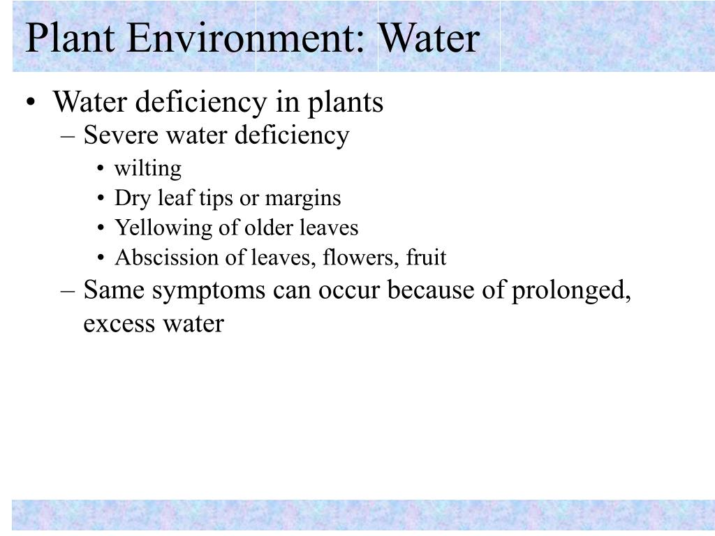 Plant Environment: Water