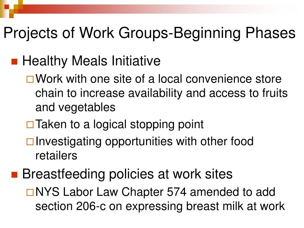 Projects of Work Groups-Beginning Phases