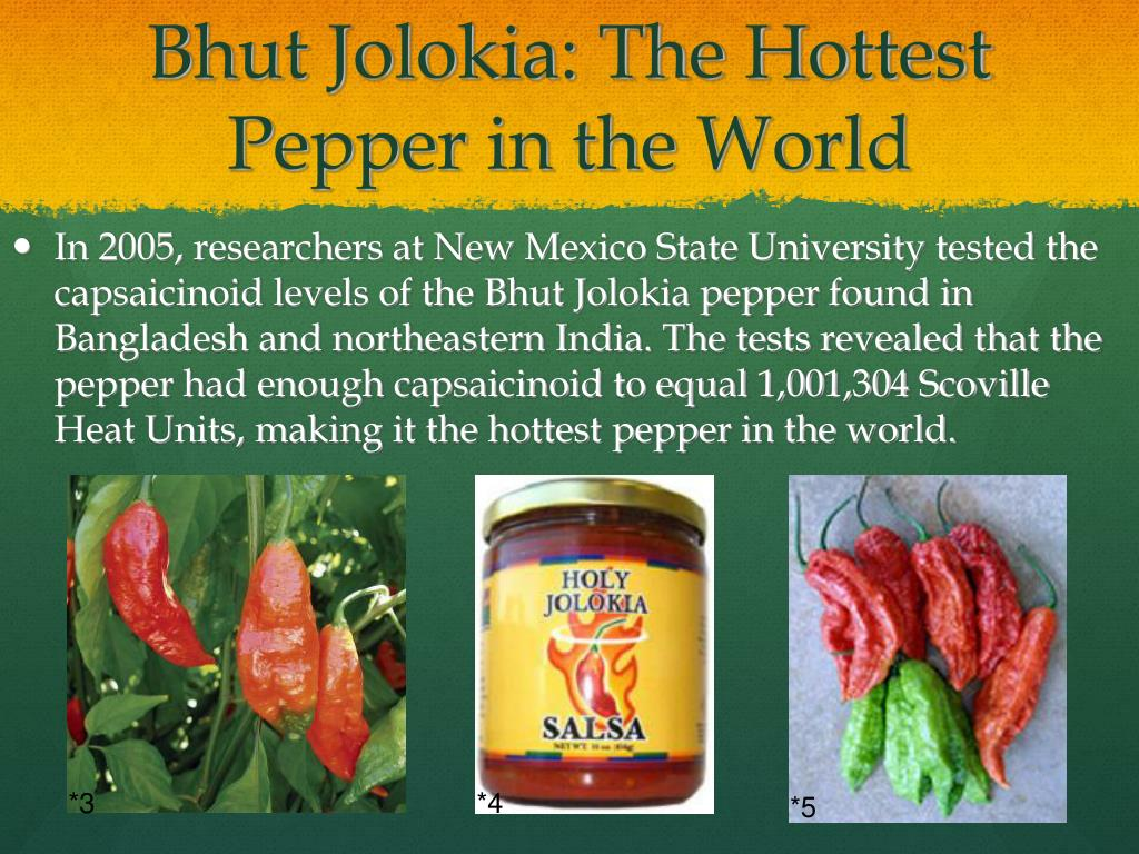 Hottest Pepper In The World List PPT - A Pepper Primer ...