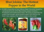 bhut jolokia the hottest pepper in the world