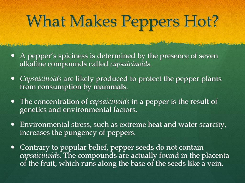 What Makes Peppers Hot?