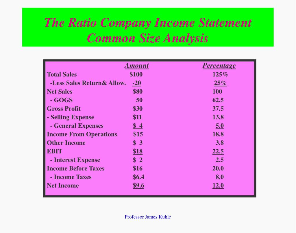 The Ratio Company Income Statement                                                                                                    Common Size Analysis
