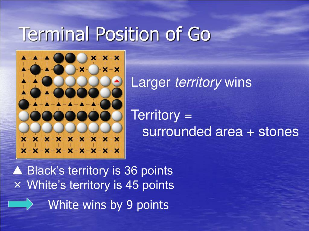 Terminal Position of Go