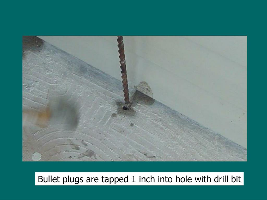 Bullet plugs are tapped 1 inch into hole with drill bit