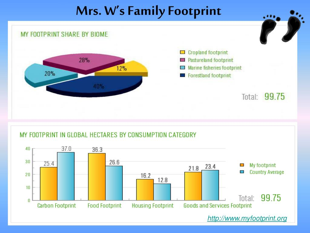 Mrs. W's Family Footprint