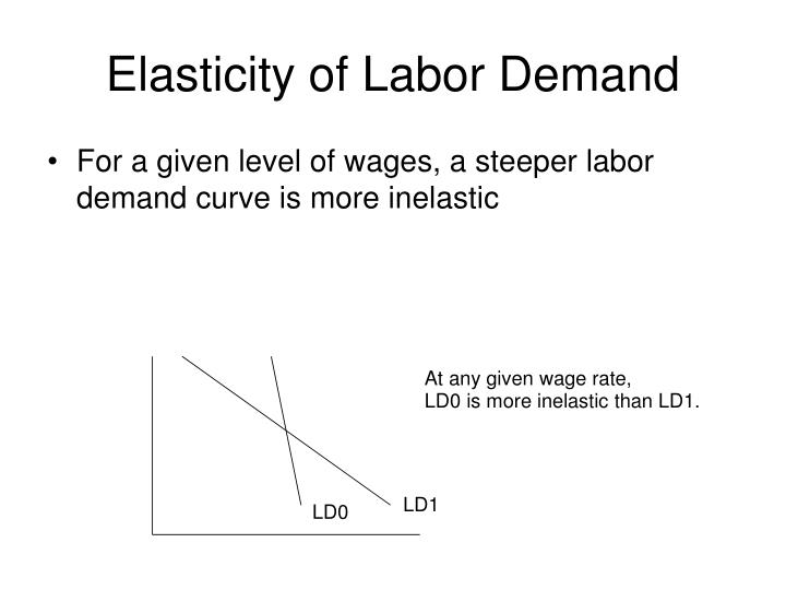 Elasticity of labor demand3