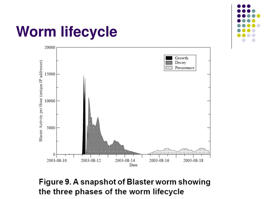 Worm lifecycle