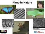 nano in nature