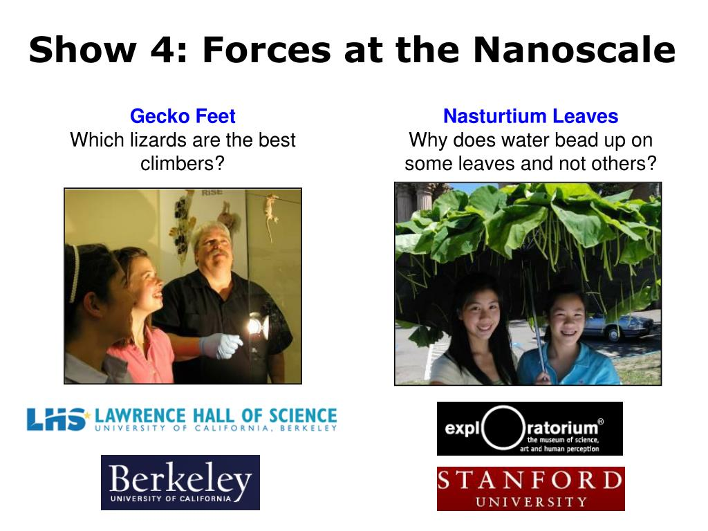 Show 4: Forces at the Nanoscale