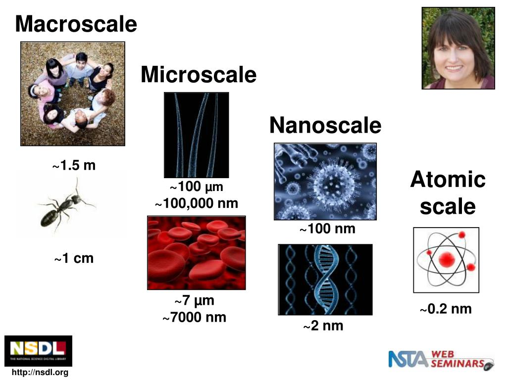 Macroscale
