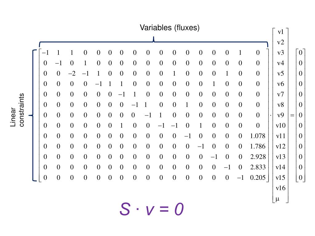 Variables (fluxes)