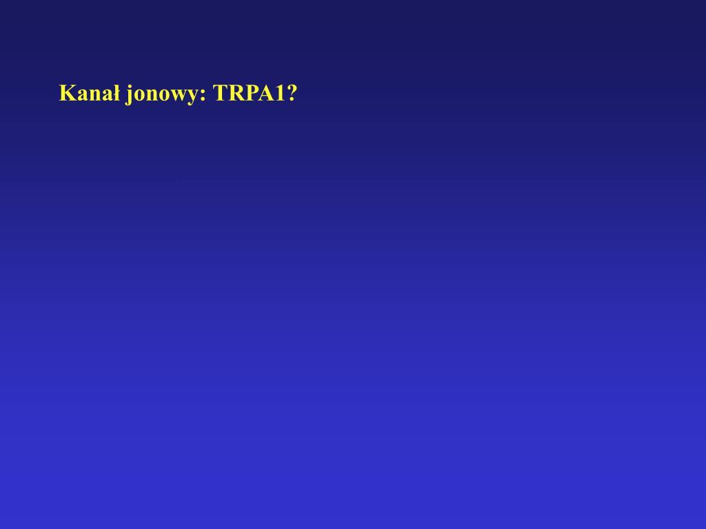 Kanał jonowy: TRPA1?