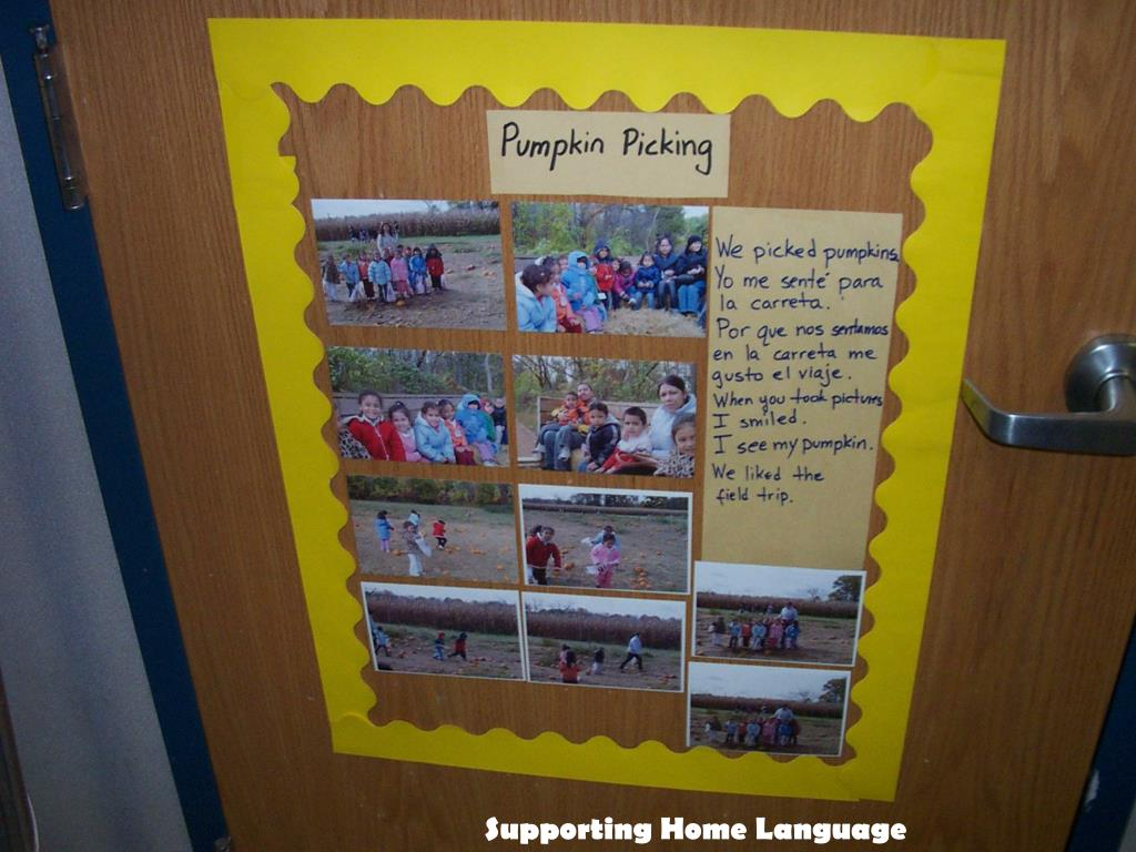 Supporting Home Language