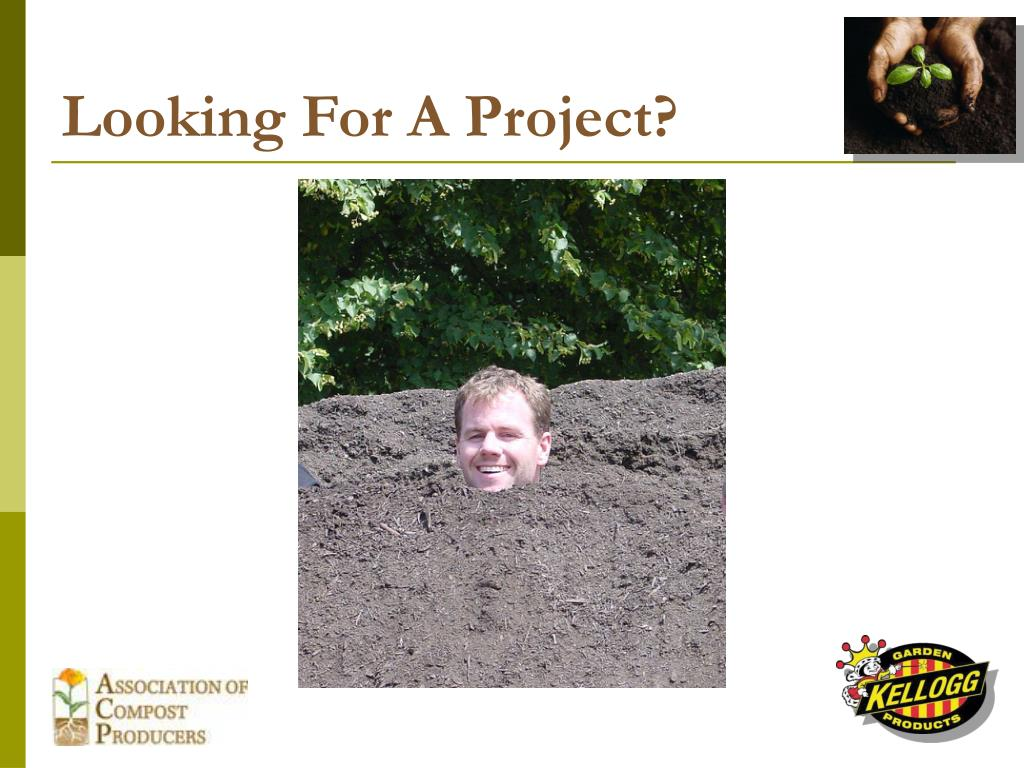Looking For A Project?