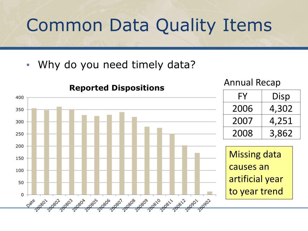 Common Data Quality Items