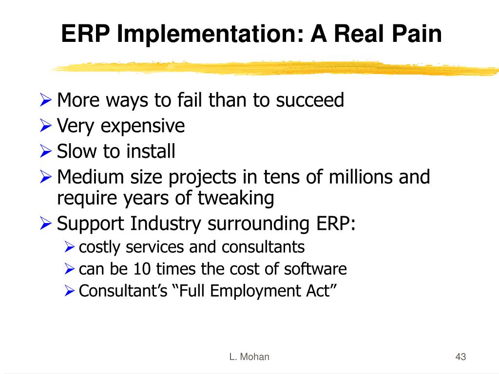 ERP Implementation: A Real Pain
