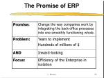 the promise of erp