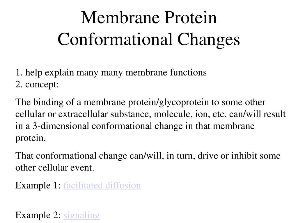Membrane Protein Conformational Changes