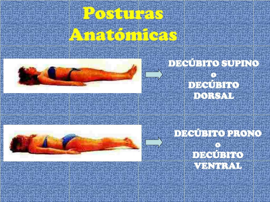 Posturas Anatómicas