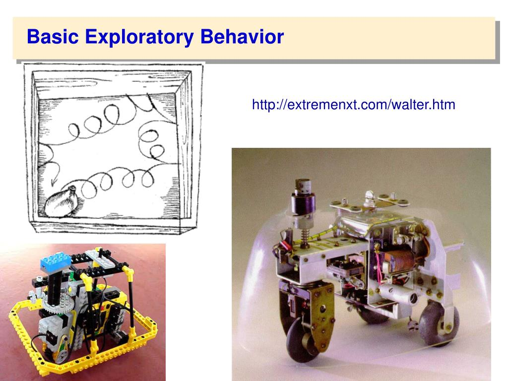 Basic Exploratory Behavior