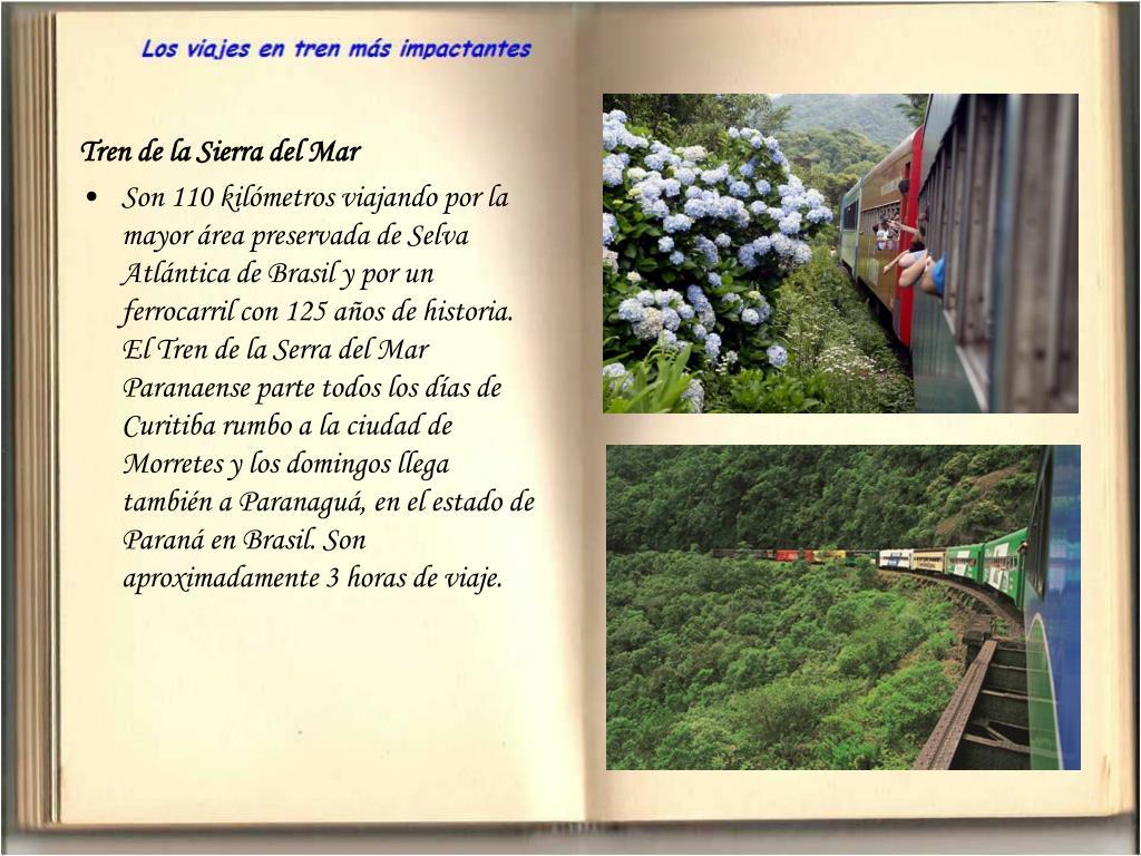 Tren de la Sierra del Mar