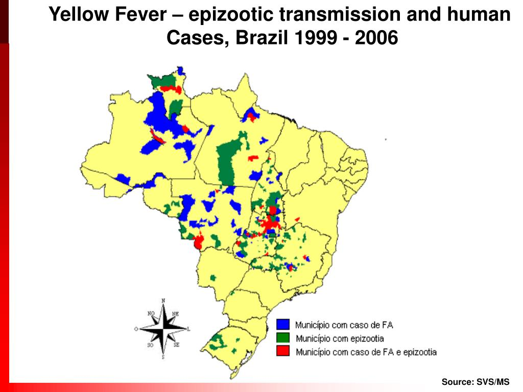 Yellow Fever – epizootic transmission and human